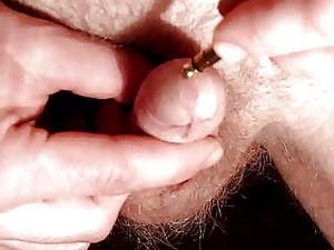Inside Penis