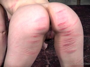 Tortured, Spanked And Locked Up In A Cage Bonnie Day