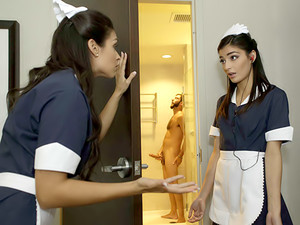 Shy Maids